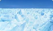 知床的流冰